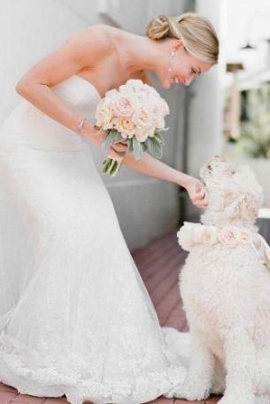 Сватбени снимки с куче