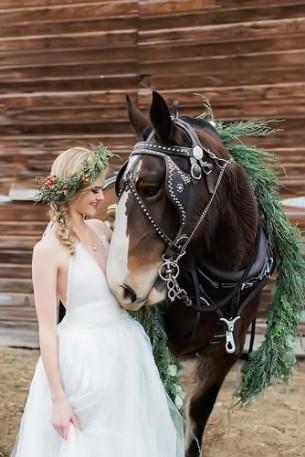 Романтични снимки с коне