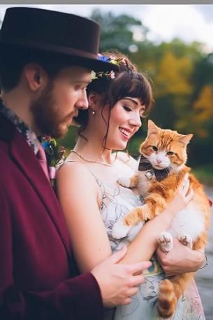 Сватбени снимки с коте
