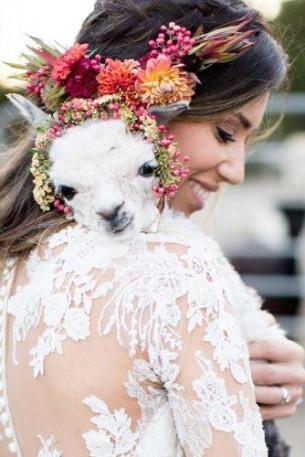 Сватбени снимки с домашни любимци