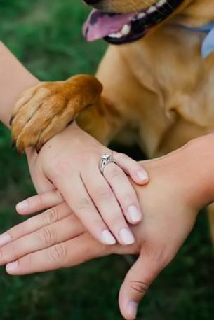 Идеи за снимки с вашите пръстени